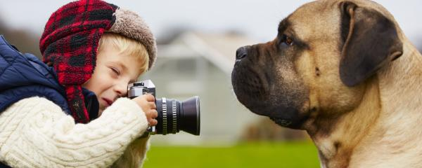 boy photographing agility dog